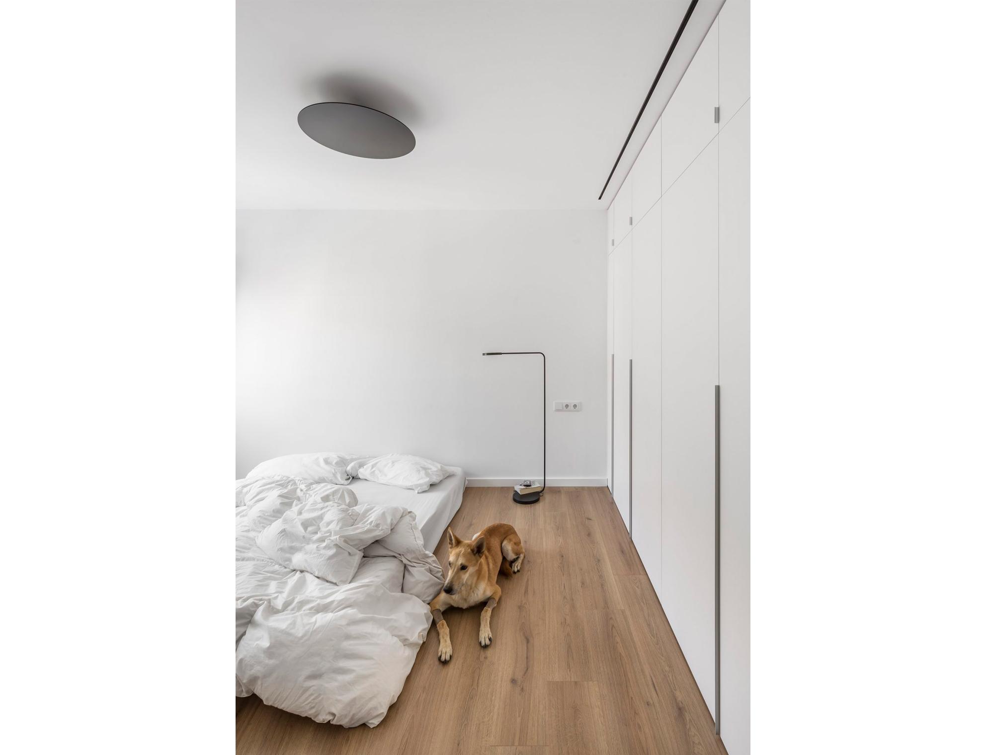 dormitorio con perro